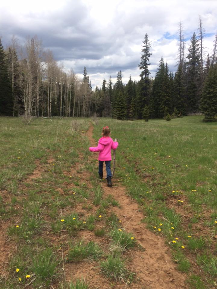 Duck Creek Village Hiking